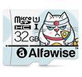 Alfawise micro SD memóriakártya teszt