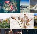 100+ weboldal, ha képekre, grafikákra van szükséged
